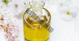Öl selbst herstellen mit der Ölpresse